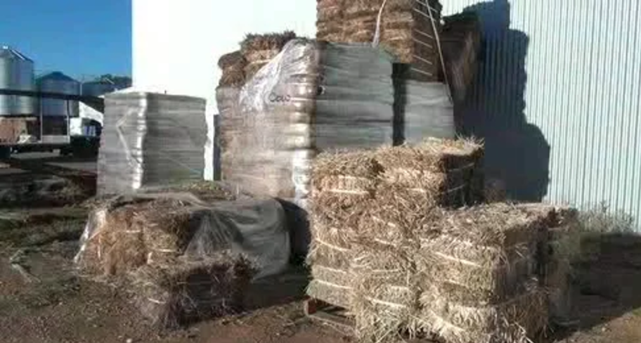 Eco Bale Special